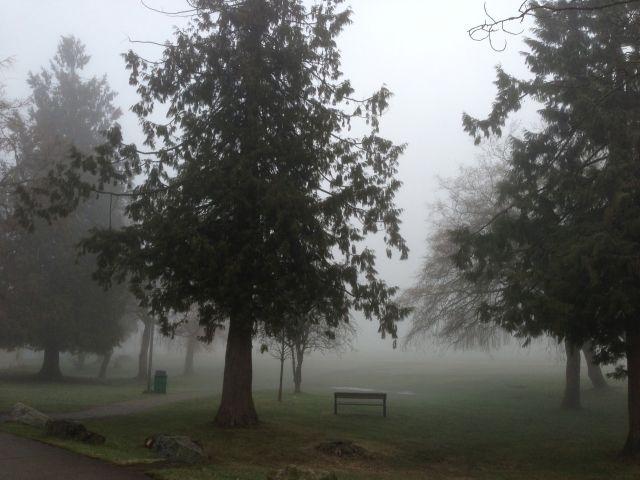 Confederation Park, Burnaby