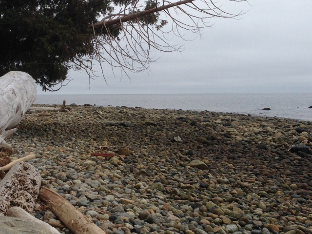 Beach in Gibsons - Davidicus Wong