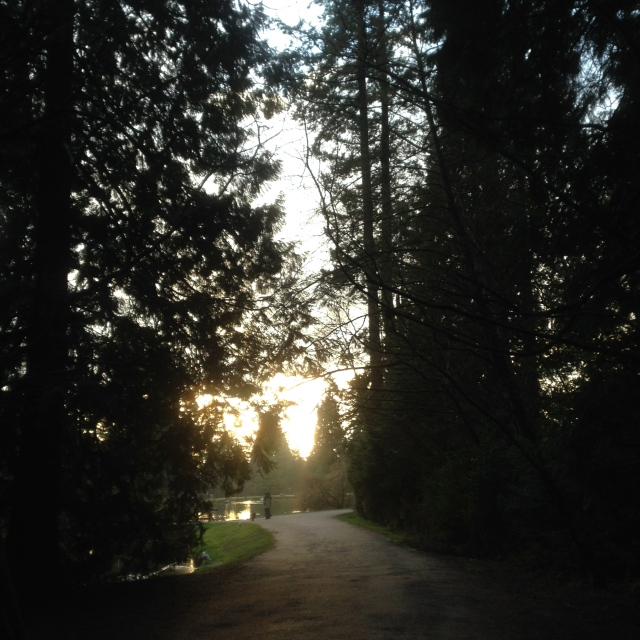 A walk through Central Park, Burnaby