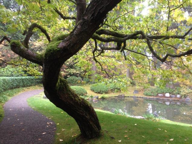 Nitobe Memorial Garden, UBC (Davidicus Wong)