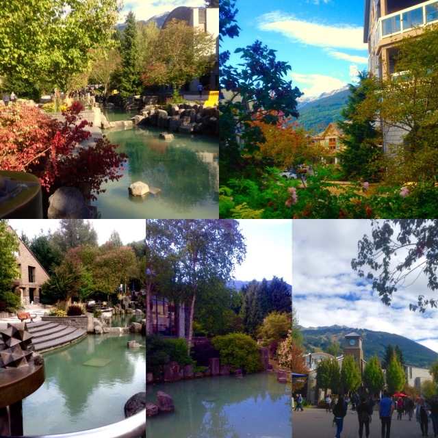 Autumn in Whistler.jpg